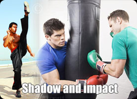 A.N.A CARDIO KICK PUNCH FU Shadow' AND Impact